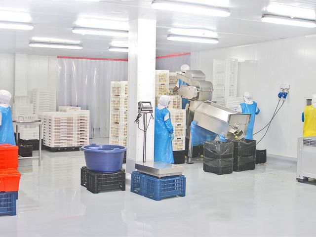 Choosing the right industrial floor